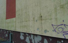 Dėl žaliuojančių fasadų termoizoliacija nekalta